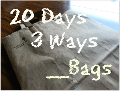 20 Days, 3 Ways, __  Bags: On-Going Process