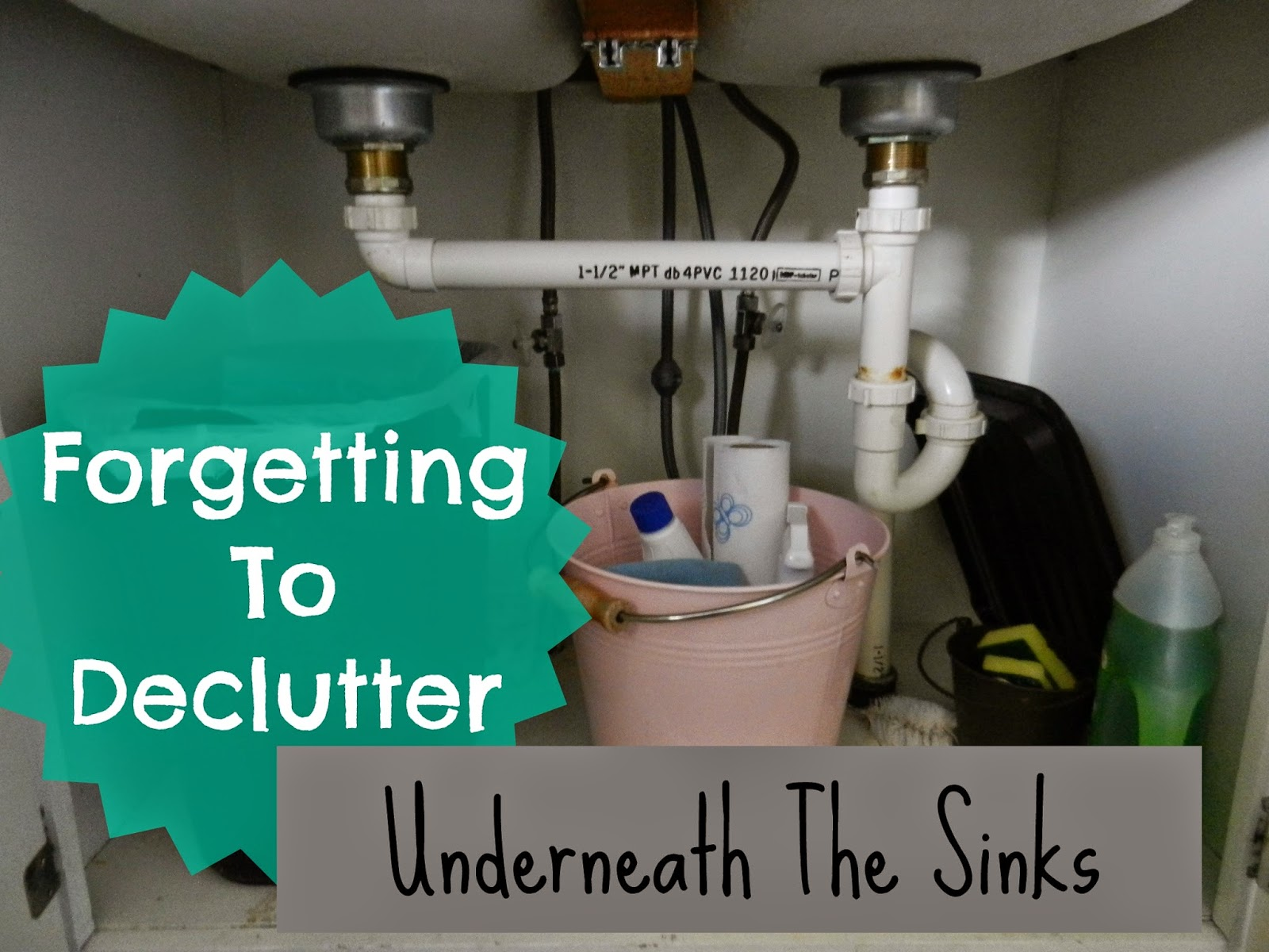 New Series! Forgetting to Declutter: Under the Sinks