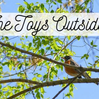 The Toys Outside